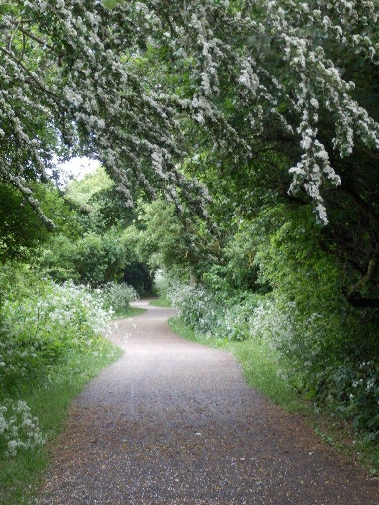 Walk around the Lea valley park