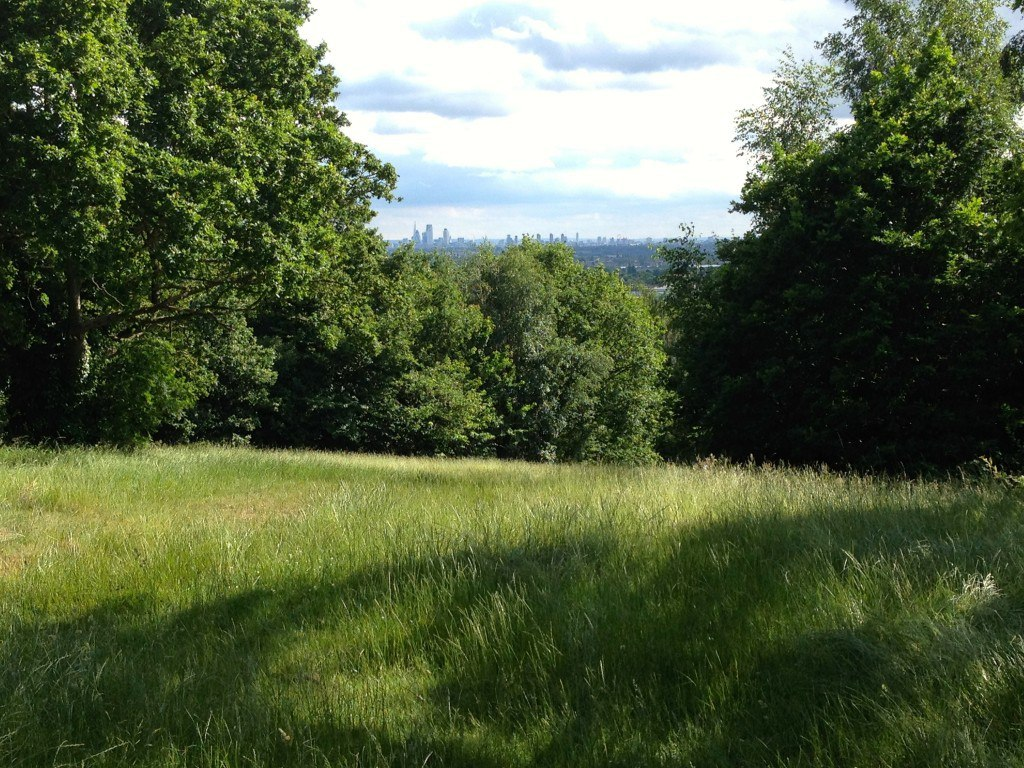 Pole Hill in Greater London