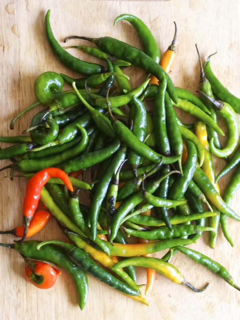 Green chilli jam recipe