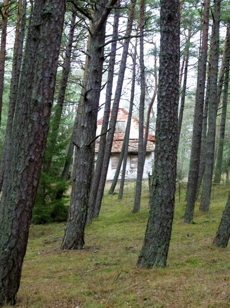 Juodkrante, Kuršių Nerija National Park, Lithuania
