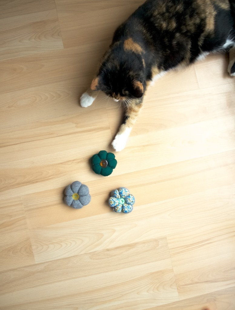 DIY catnip flower toy for cats