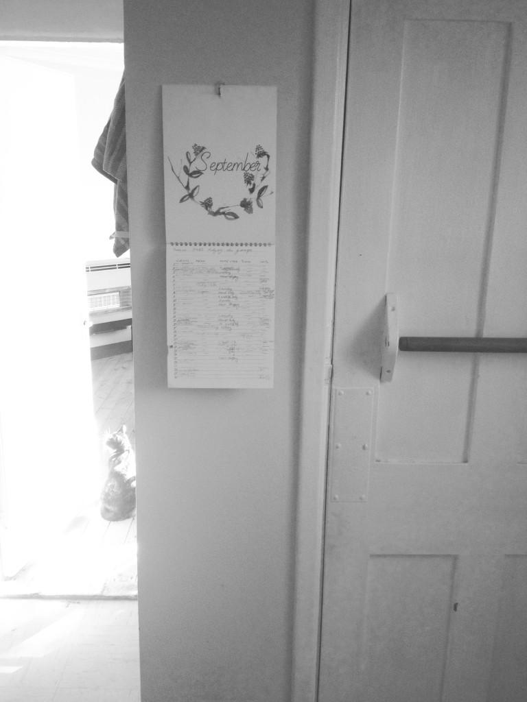 Friendly Nettle calendar in my kitchen