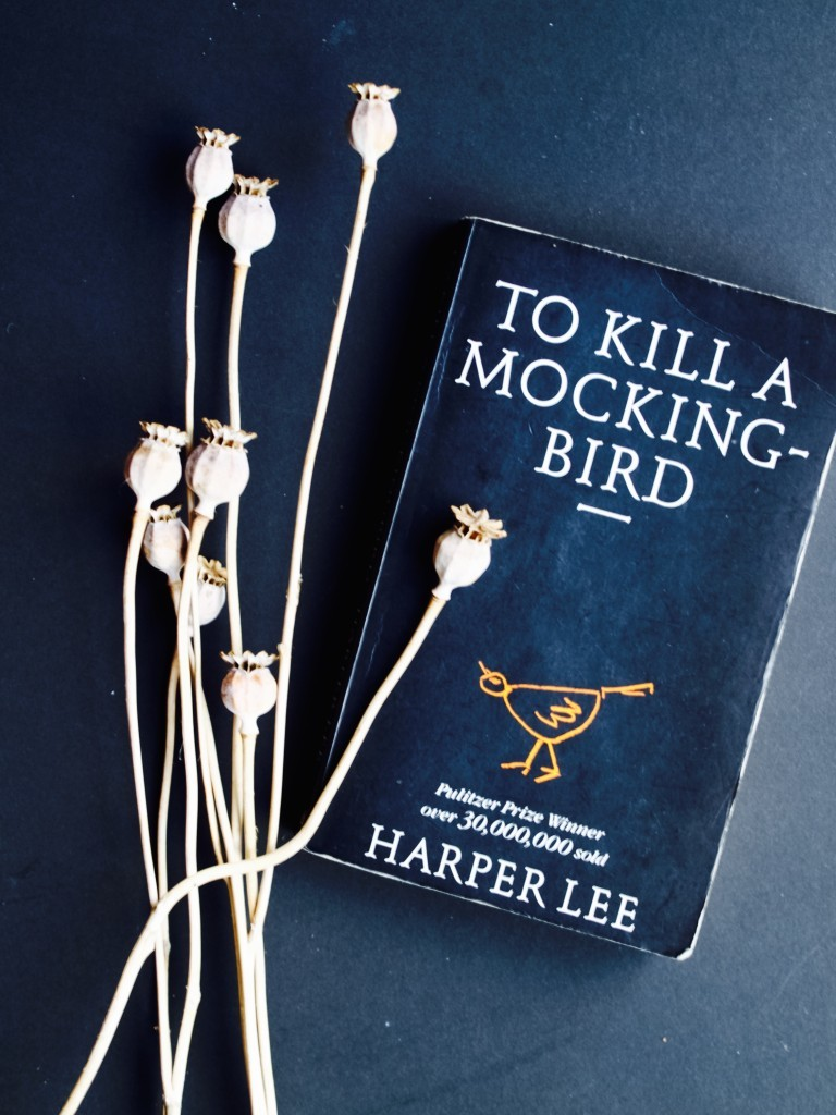 "My thoughts on ""To Kill A Mocking Bird"""