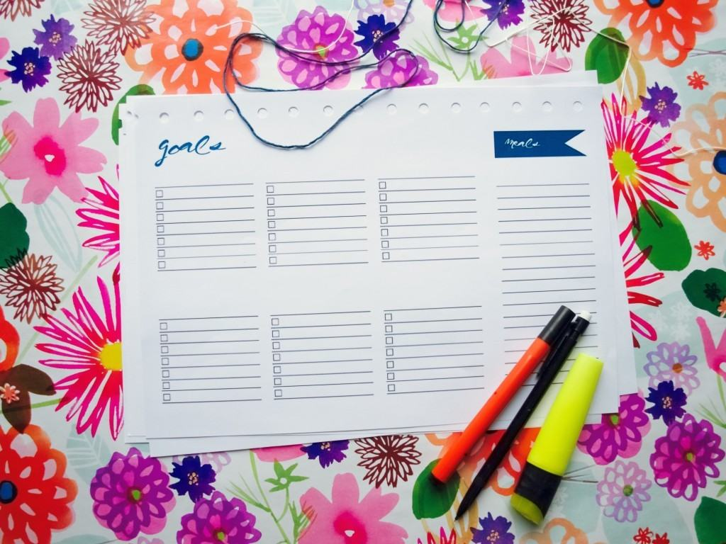 printable 2017 planner/calendar