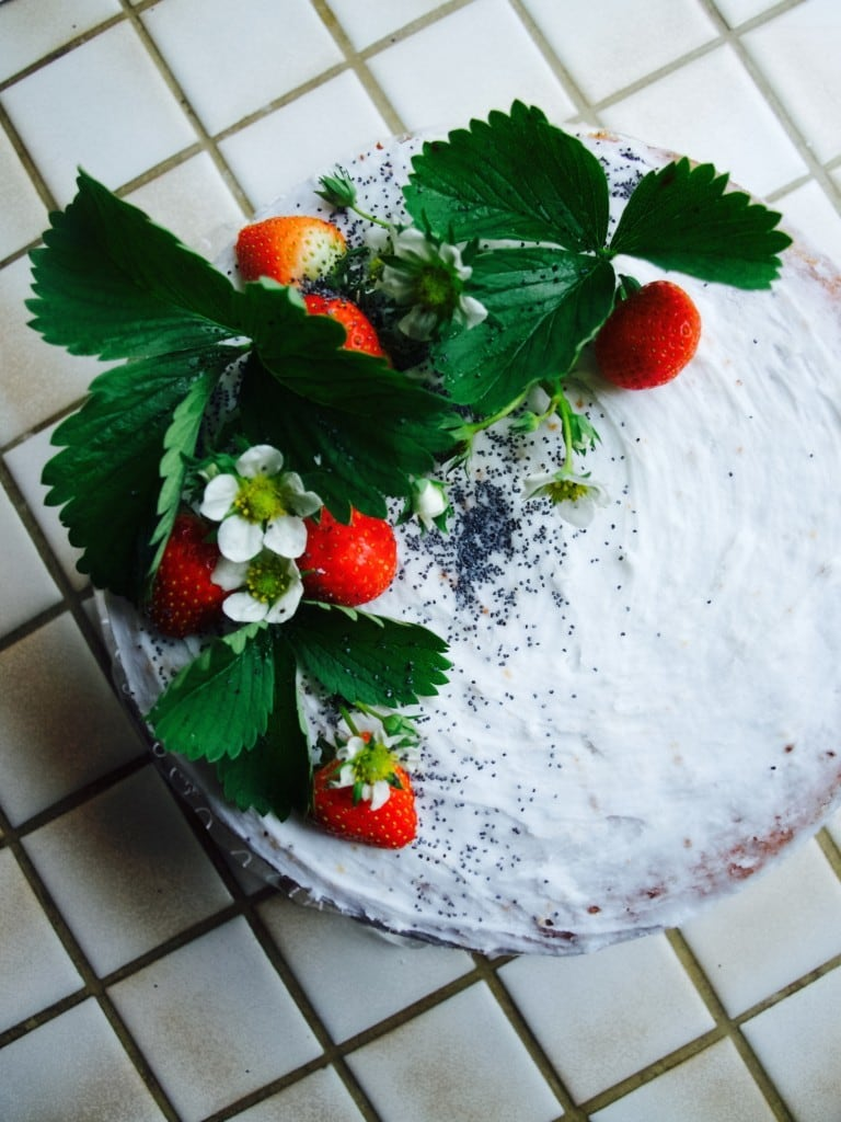 Nicola's birthday cake