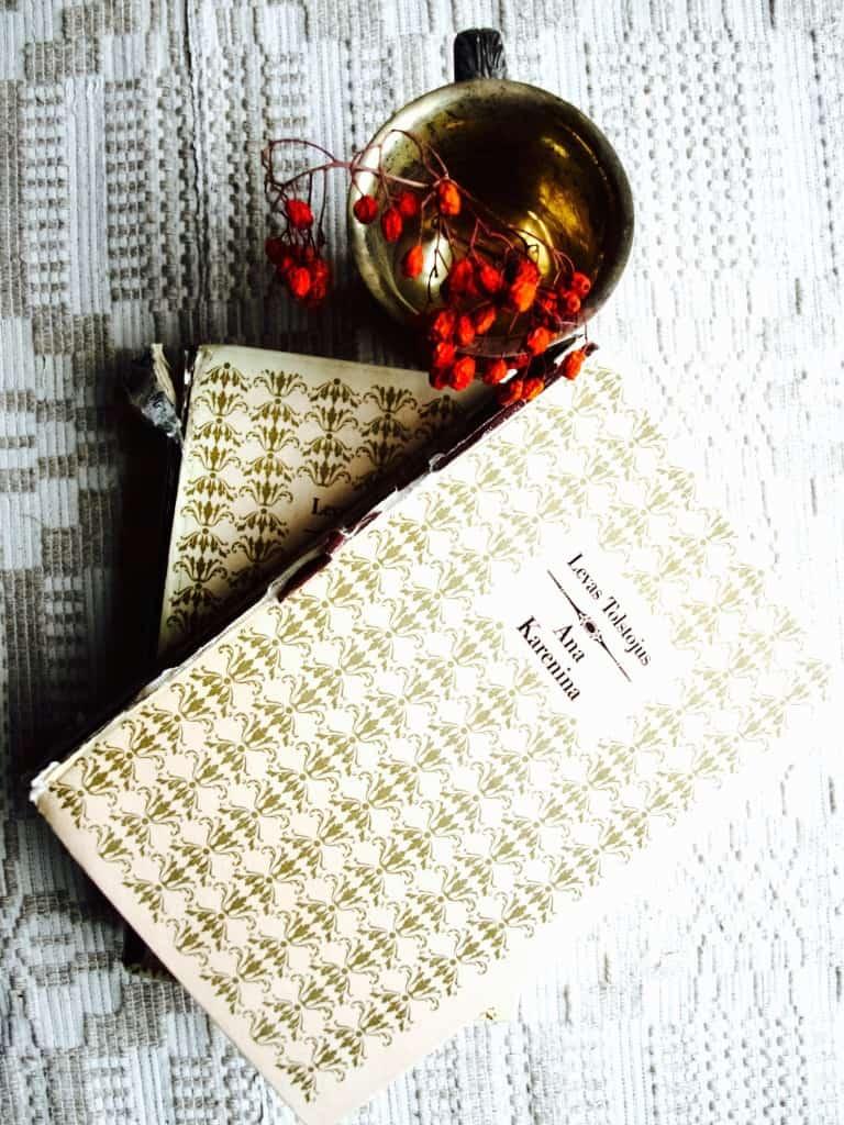 My thoughts on Anna Karenina book
