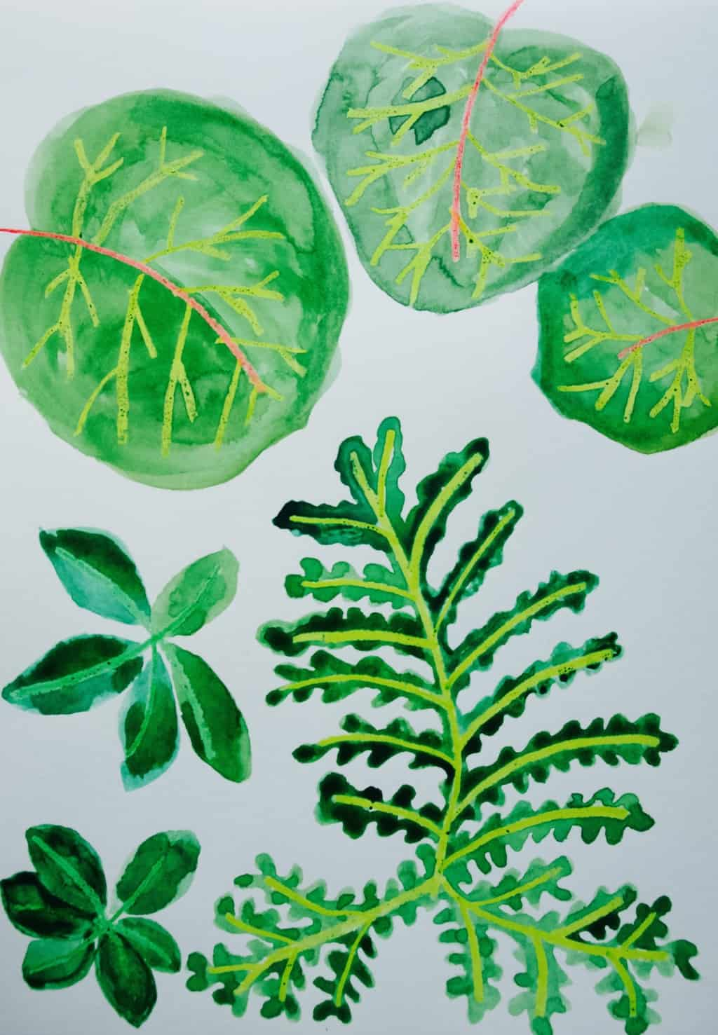 Watercolour challenge: inspired by jungle