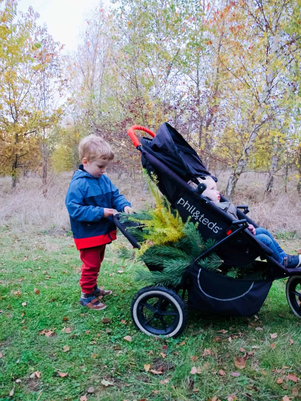 Foraging with kids + Foraged winter wreath DIY